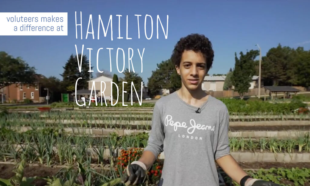 Volunteers Make A Difference at Hamilton Victory Garden